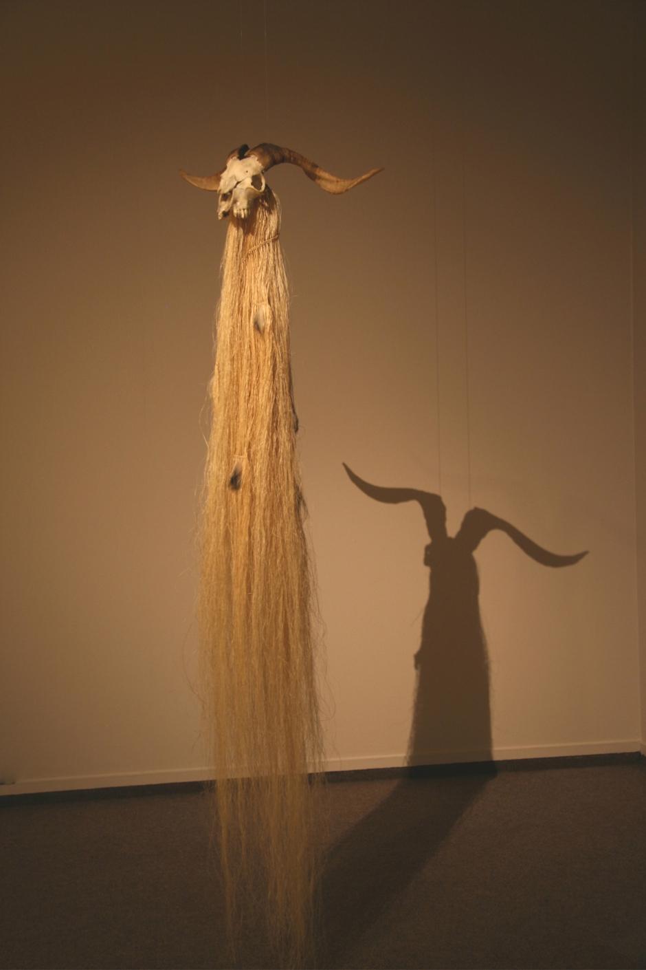 43. Goat